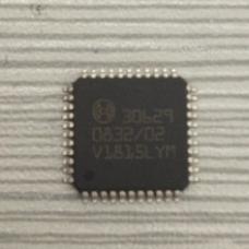 Chip 30629